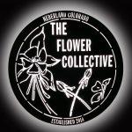 Illuminated_FlowerCollector_1